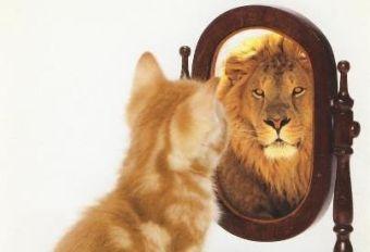 développer-confiance-en-soi