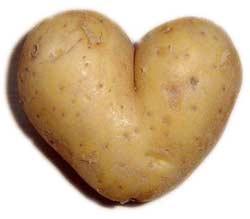 patate-coeur