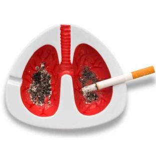 poumon cendrier.jpg